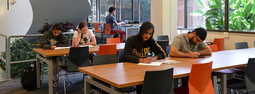 Learning Resource Program Reception